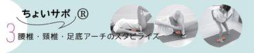 5月10日(日)ちょいサポ® イントロダクションセミナー